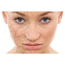 Восстановление барьера – активные агенты и системы для поддержания регенерации кожи