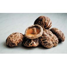 Экстракт грибов шиитаке для молодости кожи