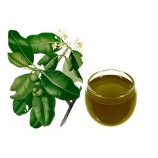 Масло таману для ухода за кожей– новые исследования