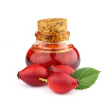 Целительные свойства масла семян шиповника