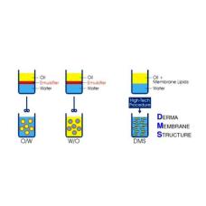 Универсальные базовые кремы с мембранной структурой для ухода за кожей, защиты кожи и дерматологического лечения
