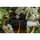 Сыворотка-спрей для жирной кожи «Гамамалис и Тысячелистник»