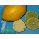 Лимонный Молочко-Крем-SOS для сухой, обветренной кожи рук
